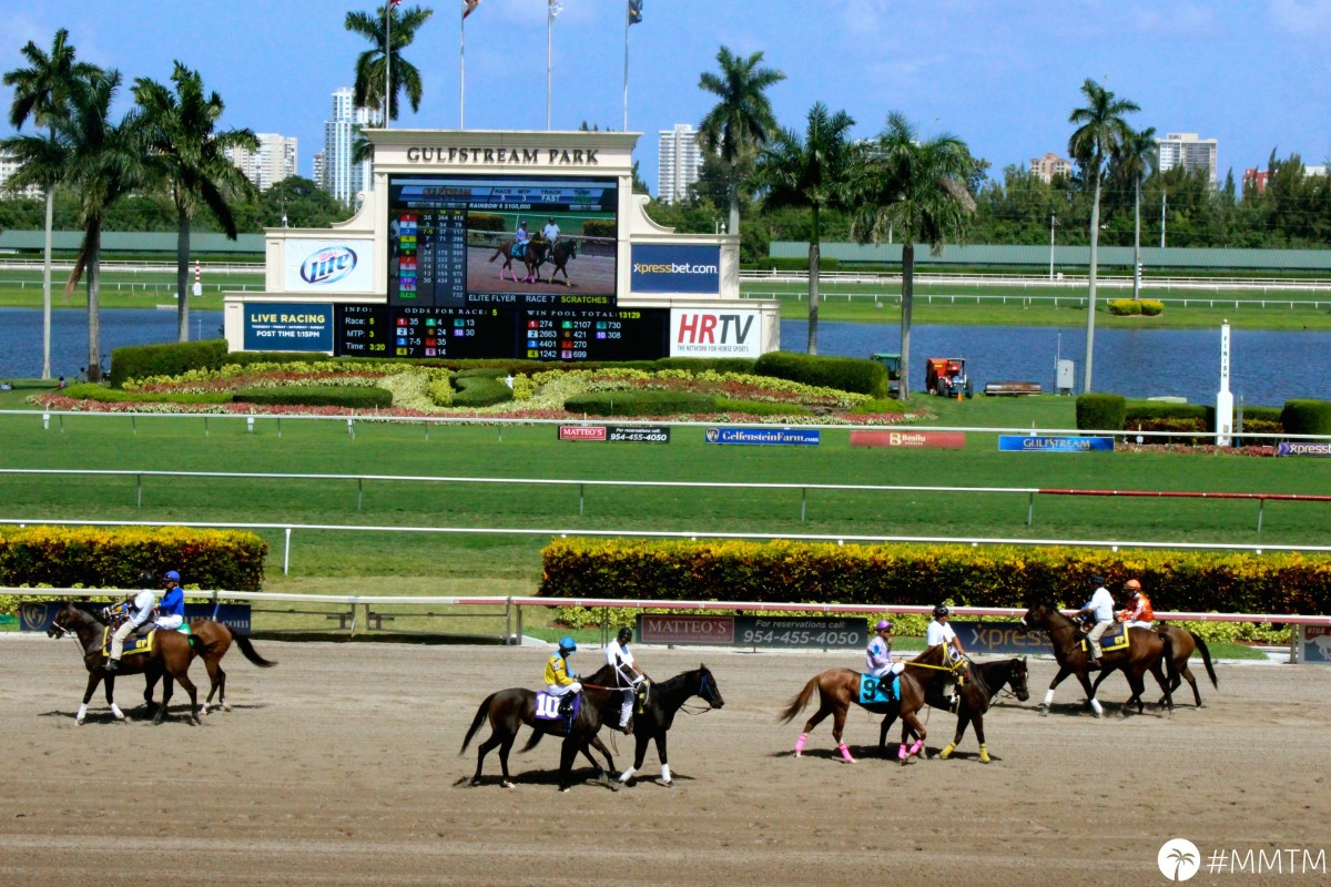 Gulfstream Horse Racing – A Total Win