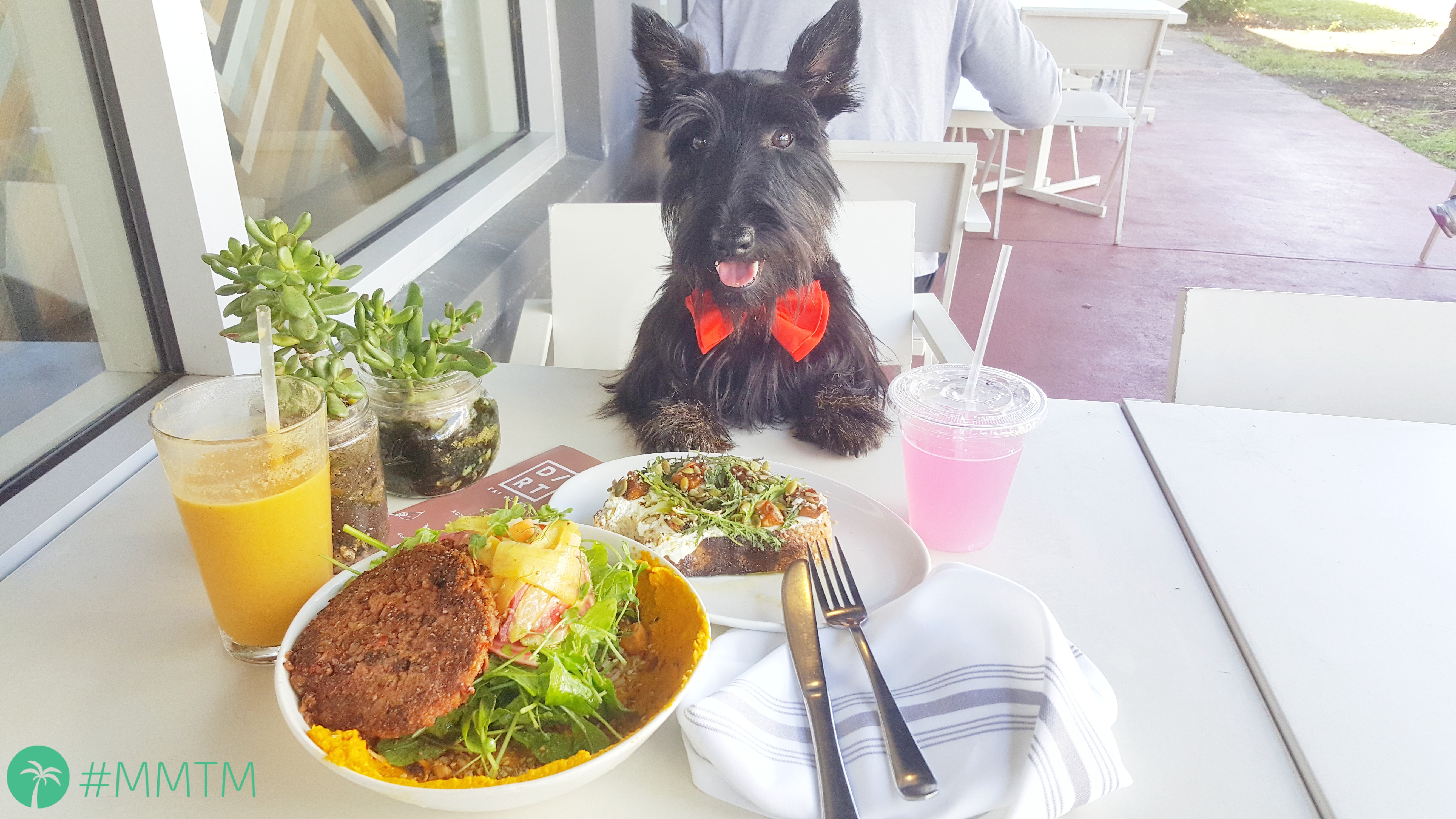 Get Your Paws Dirt Y With This New Fall Menu Mitch And Mel Take Miami